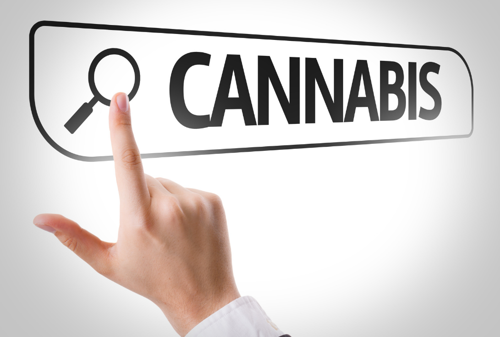 How to Buy Cannabis in Legal Medical State?
