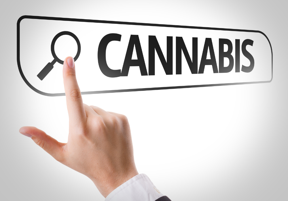 Purchase Marijuana in legal medical state?