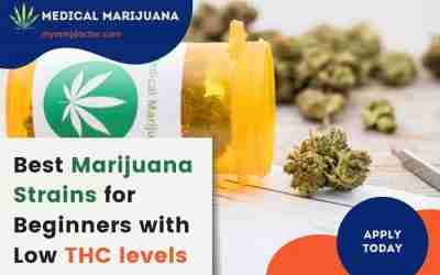 Best Marijuana Strains for beginners with low THC levels