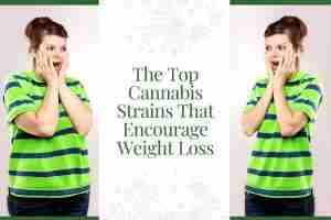 The Top Cannabis Strains That Encourage Weight Loss