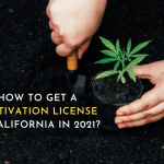 How to get a cultivation license in California in 2021